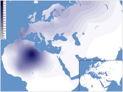 De ruimtelijke frequentieverdeling (%) van haplogroep H1 in West-Eurazië en Noord-Afrika.