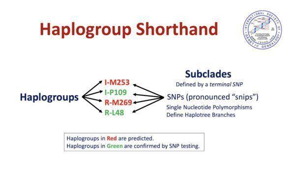 Haplogroup shorthand