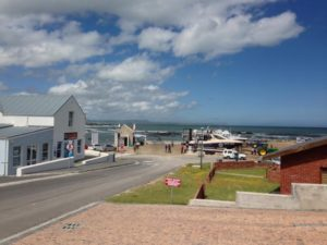 Gans Baai, South Africa, White Shark Projects