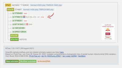 H1c1k formed 1400 YBP, TMRCA 800 YBP
